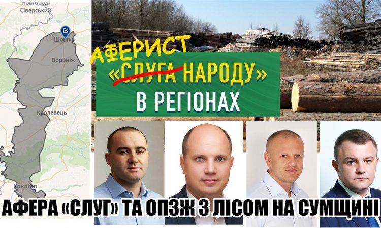 Схема Слуг та ОПЗЖ по розкраданню бюджету України на експорті лісу